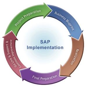 FICO PDF BLUEPRINT BUSINESS SAP