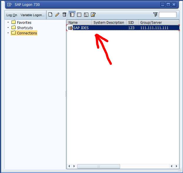 Connecting to SAP Systems - SAP IDES, SAP Remote Access