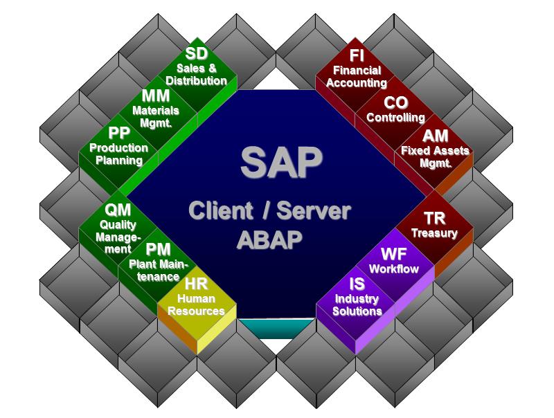 Figure 2 - SAP ERP Application Modules