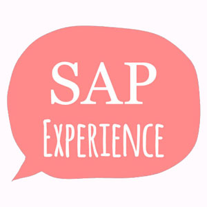 What is SAP Experience?