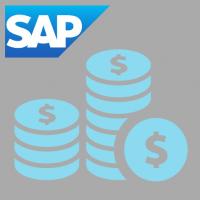SAP Training Cost