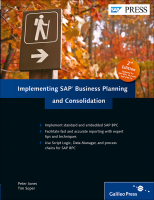 Implementing SAP Business Planning and Consolidation