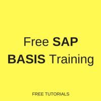free sap basis training