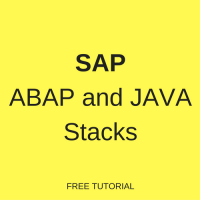 SAP ABAP and JAVA Stacks