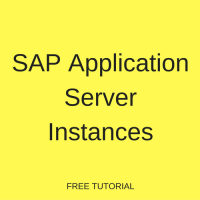SAP Application Server Instances