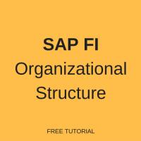 sap-fi-org-structure