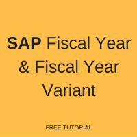 SAP Fiscal Year and Fiscal Year Variants
