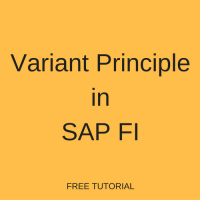 what is the variant principle in sap fi