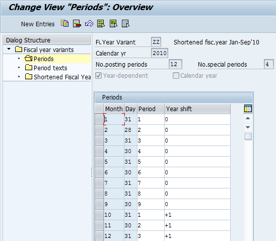 SAP Fiscal Year Variant ZZ Periods