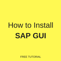 how to install sap gui