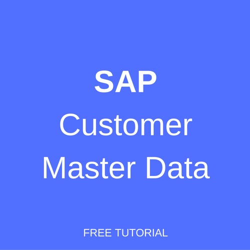SAP Customer Master Data