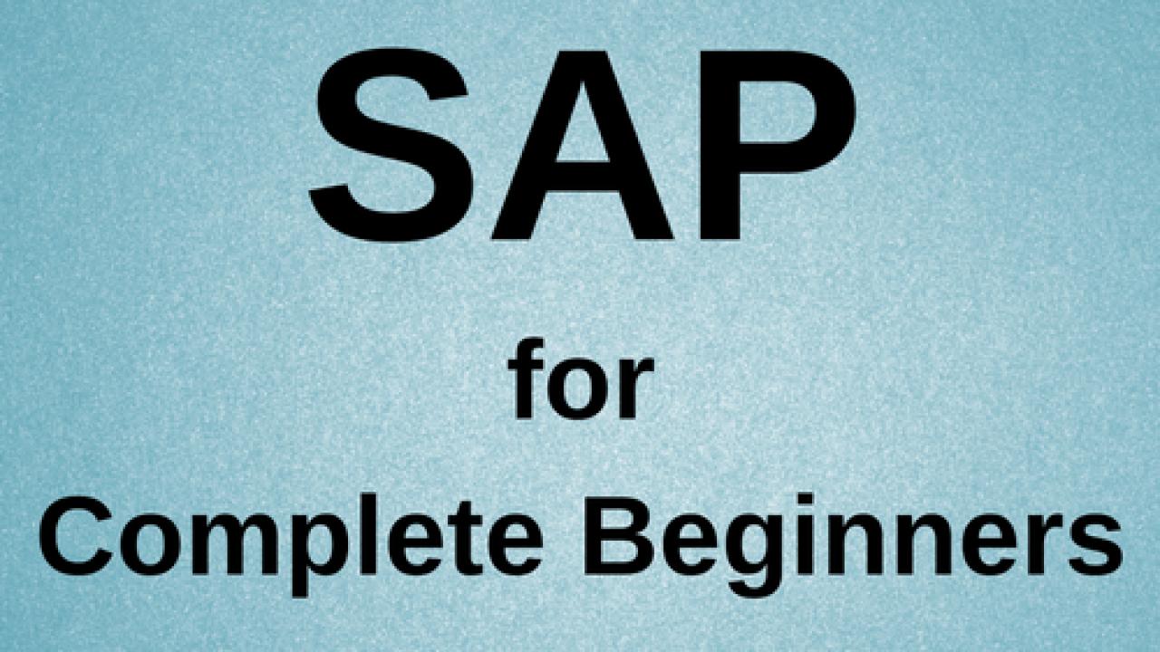 SAP for Beginners: Guide to Pursue SAP Career - SAP Training