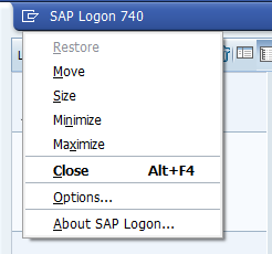 About SAP Logon