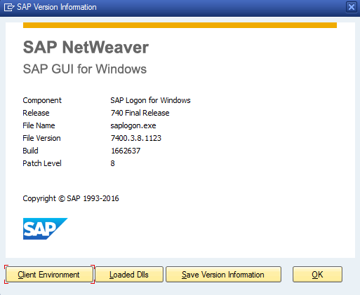 SAP GUI for Windows Version