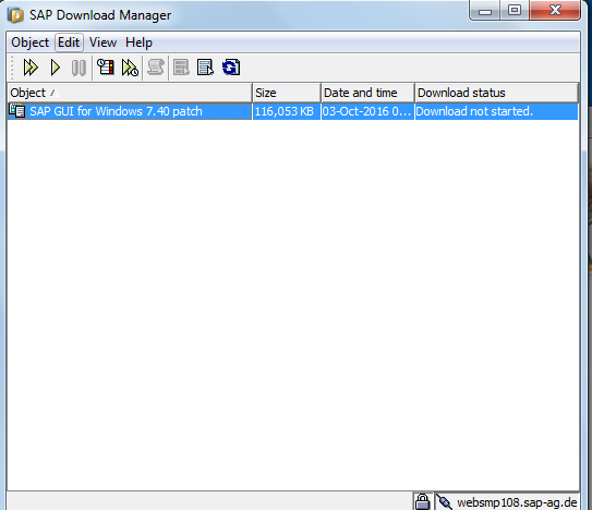 SAP Download Manager with SAP GUI Patch