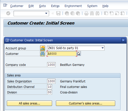Customer Master - Initial Screen with fields populated
