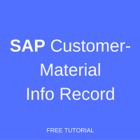 sap customer-material info record
