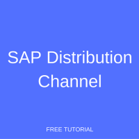 sap distribution channel