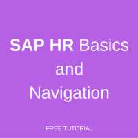 sap hr basics and navigation