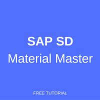 sap sd material master
