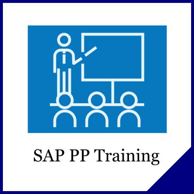 SAP PP Training