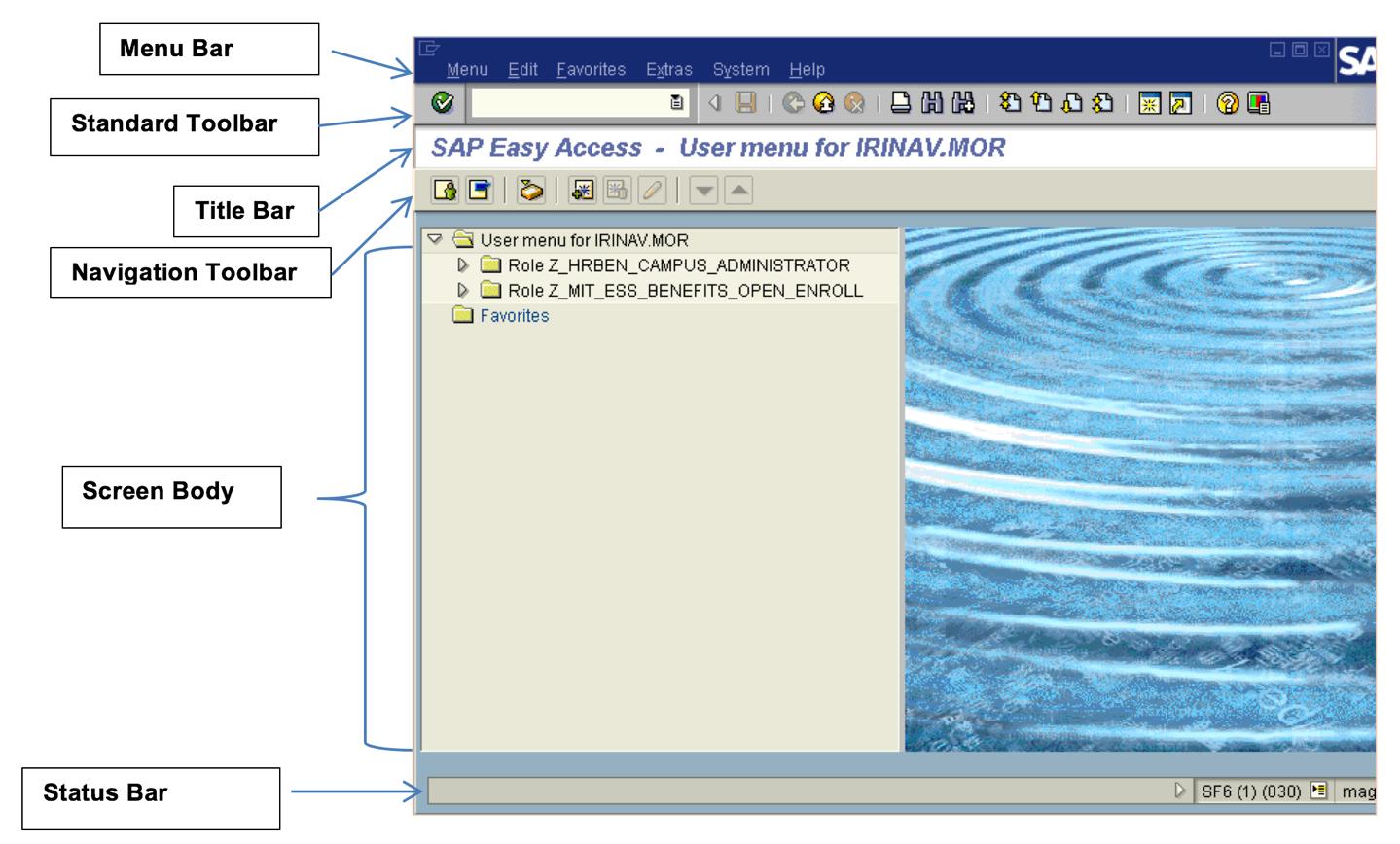 SAP Logon screen