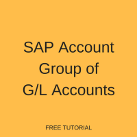 SAP Account Group of GL Accounts