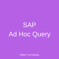 SAP Ad Hoc Query