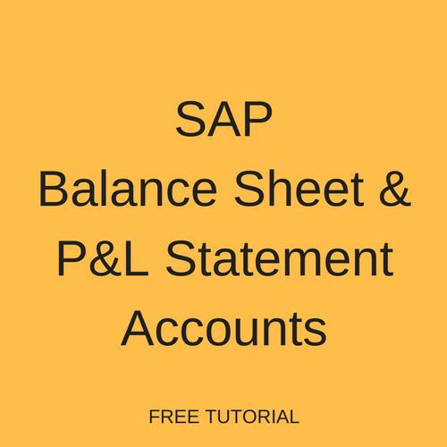 sap balance sheet and p l statement accounts free sap fi training