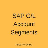 SAP G/L Account Segments