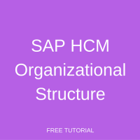 SAP HCM Organizational Structure