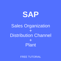 SAP Sales Organization - Distribution Channel - Plant