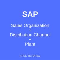 SAP Sales Organization - Distribution Channel - Plant