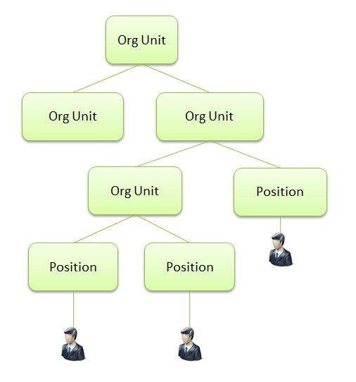 An Organizational Structure