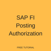 SAP FI Posting Authorization