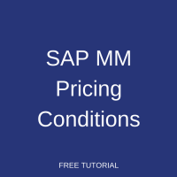 SAP MM Pricing Conditions