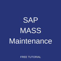 SAP Mass Maintenance