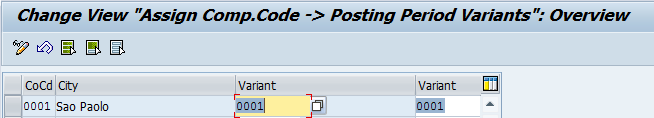 Assign Posting Period Variants to Company Codes