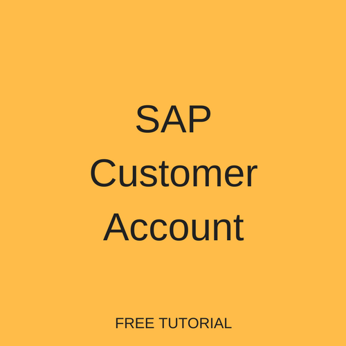 SAP Customer Account