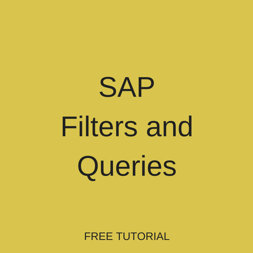 SAP Filters and Queries