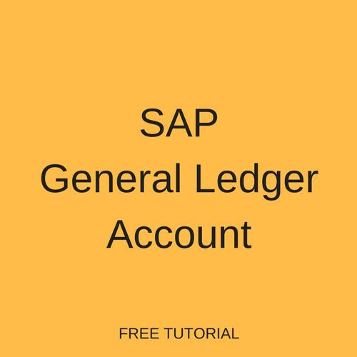 SAP General Ledger Account