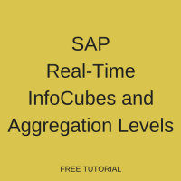 SAP Real-Time InfoCubes and Aggregation Levels