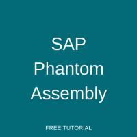 SAP Phantom Assembly