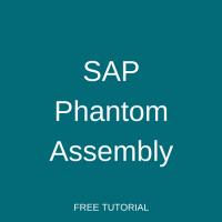 SAP Phantom Assembly Tutorial - Free SAP PP Training
