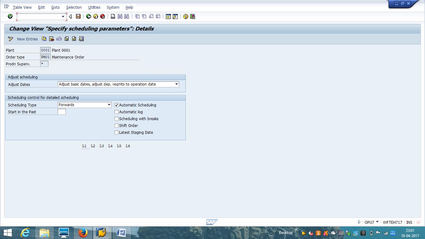 Scheduling Parameters of SAP Maintenance Order Type
