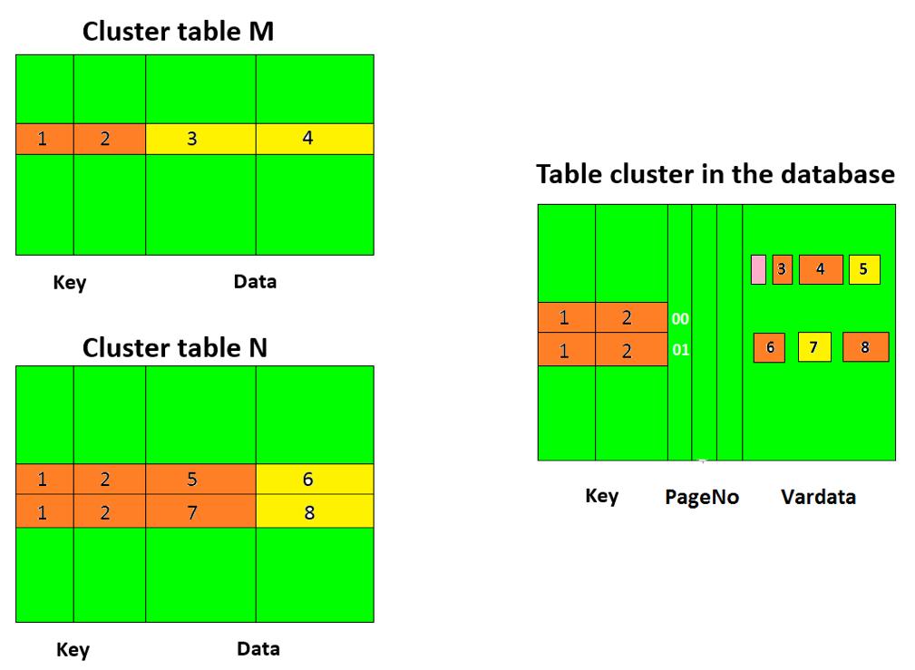 SAP Cluster Table Storage Model