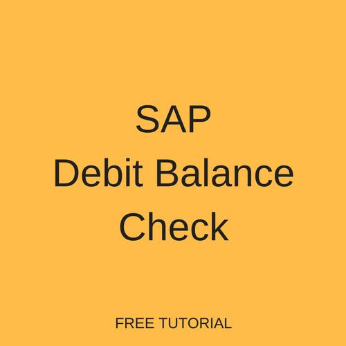 SAP Debit Balance Check