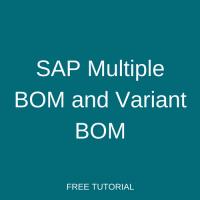 SAP Multiple BOM and Variant BOM