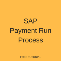 SAP Payment Run Process