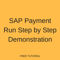 SAP Payment Run Step by Step Demonstration